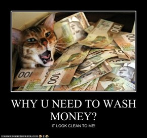WHY U NEED TO WASH MONEY?