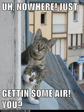 UH, NOWHERE! JUST  GETTIN SOME AIR! YOU?