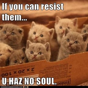 If you can resist them...  U HAZ NO SOUL.