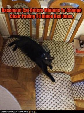 Basement Cat Orders Minions To Change Chair Pading To Blood Red Ones.