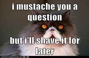i mustache you a question  but i'll shave it for later