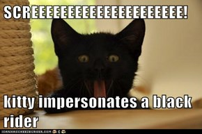 SCREEEEEEEEEEEEEEEEEEEEE!  kitty impersonates a black rider