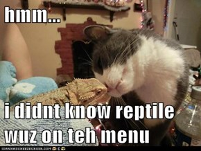 hmm...  i didnt know reptile wuz on teh menu