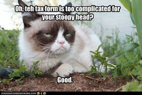 Grumpy Cat's favorite season: tax time.