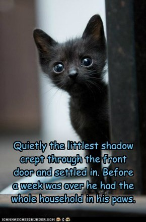 The Littlest Shadow