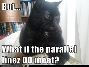 But...  What if the parallel linez DO meet?