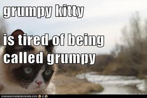 grumpy kitty is tired of being called grumpy