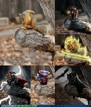 This Squirrel is Badass