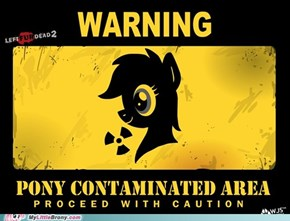 Remember - Alway Practice Safe Pony.