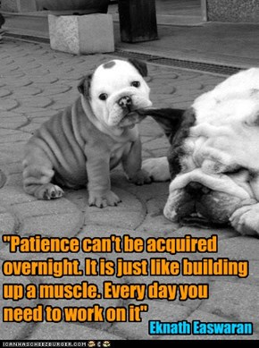 """Patience can't be acquired overnight. It is just like building  up a muscle. Every day you  need to work on it"""