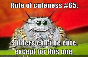 Rule of Cuteness #65
