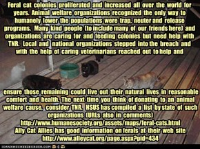 KKPS May Mayhem Supporting TNR Programs for Feral Cat Colonies