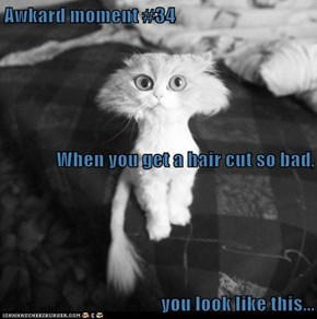 Awkard moment #34 When you get a hair cut so bad, you look like this...