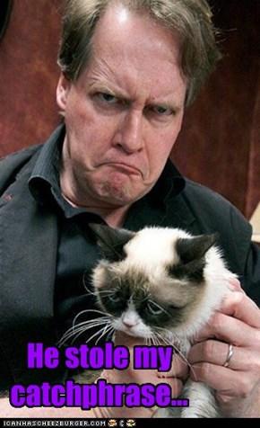 Grumpy Cat is Sad
