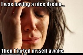 I was having a nice dream...  Then I farted myself awake