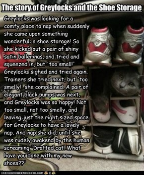 Fraactured Fairy Tale: Greylocks & the Shoe Storage