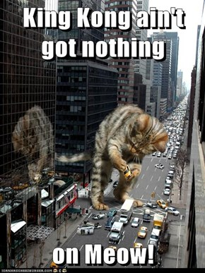 King Kong ain't got nothing  on Meow!