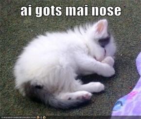 Ai Gots Mai Nose