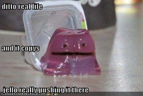 ditto real life and it copys  jello really pushing it there