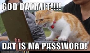 GOD DAMMIT!!!!  DAT IS MA PASSWORD!
