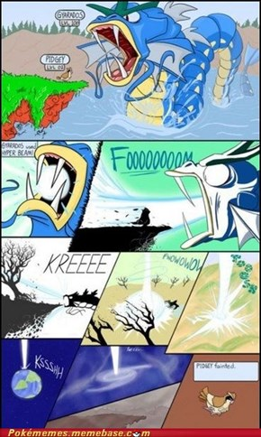 Poor Pidgey
