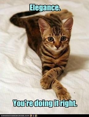 Dat Be Wun Classy Cat