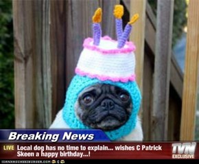 Breaking News - Local dog has no time to explain... wishes C Patrick Skeen a happy birthday...!