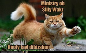 Ministry ob SIlly Wakz