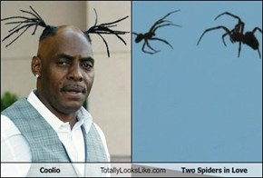 Coolio Totally Looks Like Two Spiders in Love
