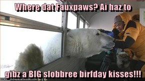 Where dat Fauxpaws? Ai haz to  gibz a BIG slobbree birfday kisses!!!