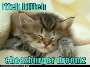 itteh bitteh  cheezburger dreemz