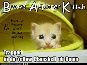 A new Bwave Asplorer Kitteh book is out!