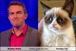 Bradley Walsh Totally Looks Like Grumpy Cat