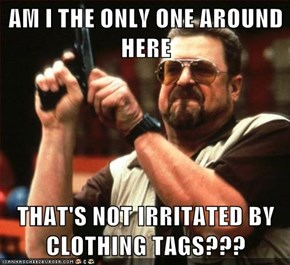 AM I THE ONLY ONE AROUND HERE  THAT'S NOT IRRITATED BY CLOTHING TAGS???