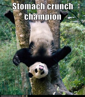 Stomach crunch champion