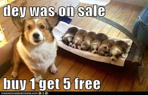 dey was on sale  buy 1 get 5 free