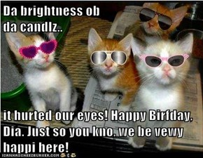 Da brightness ob                                                                  da candlz..  it hurted our eyes! Happy Birfday, Dia. Just so you kno, we be vewy happi here!