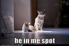 he in me spot
