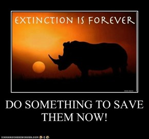 DO SOMETHING TO SAVE THEM NOW!