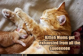 Kitteh Moms get exhausted from all the squeeeeee