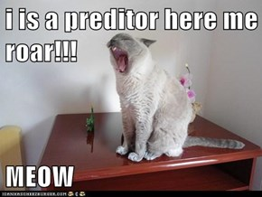 i is a preditor here me roar!!!  MEOW