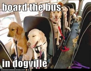 board the bus  in dogville