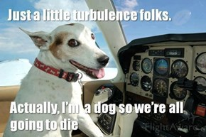 How'd You Get Your Pilot's License?
