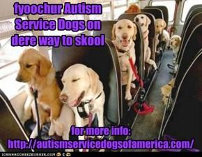 Autism Service Dogs PSA