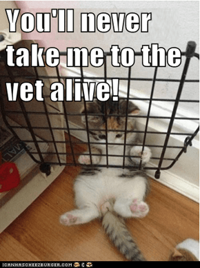 You'll never take me to the vet alive!