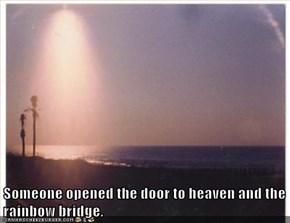 Someone opened the door to heaven and the rainbow bridge.