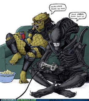 Alien vs Predator....for real