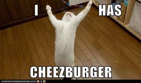 I                     HAS  CHEEZBURGER