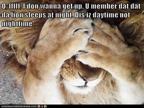 O, fffff, I don wanna get up. U member dat dat da lion sleeps at night. Dis iz daytime not nighttime.
