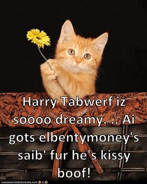 Harry Tabwerf iz soooo dreamy. .. Ai gots elbentymoney's saib' fur he's kissy boof!